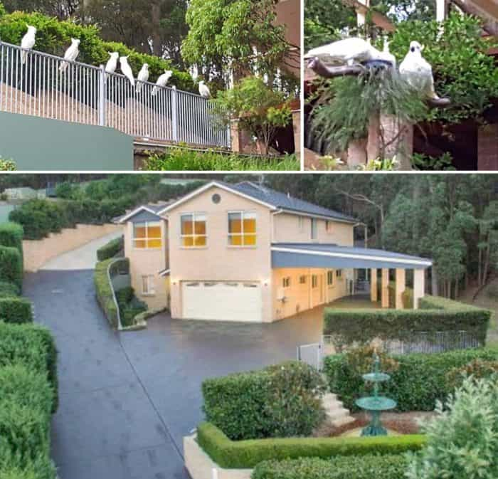 Dr Kumar And Maria's Gorgeous New Home In The Lake Macquarie Area.