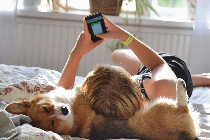 Girl with dog and phone