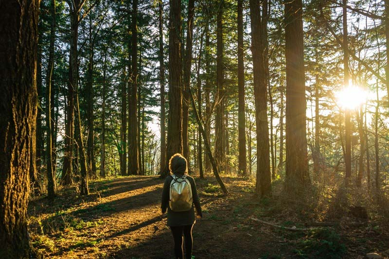 young girl with backpack walking through the forest