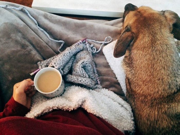 Person bundled up with coffee and pet dog