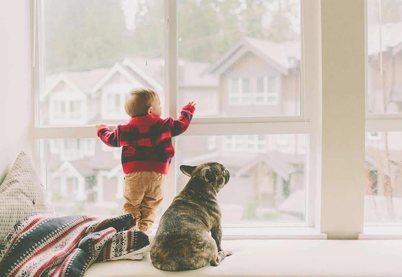 young child with dog looking outside a window