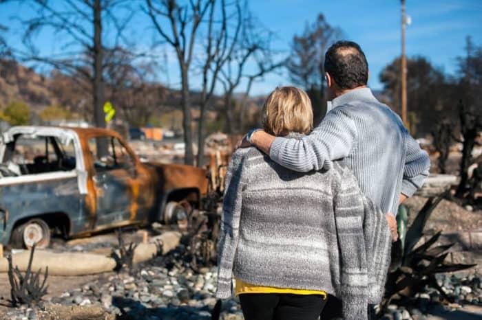 bushfire article 1