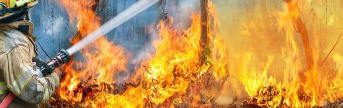 bushfire article 2