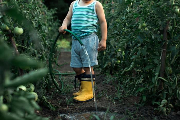 kid in a garden